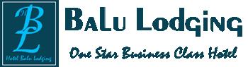 Hotel Balu Lodging